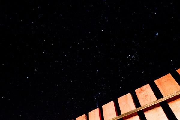 gwiazdy stajnia-6